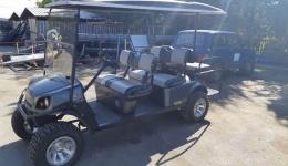Компанијата Синпекс за прв пат во државата испорача електрична голф-кола