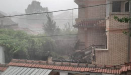 Невреме со силен дожд во Битола (Видео)